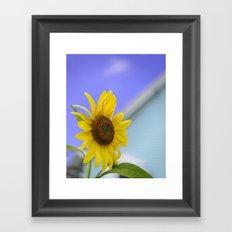 Summer Cottage Sunflower Framed Art Print