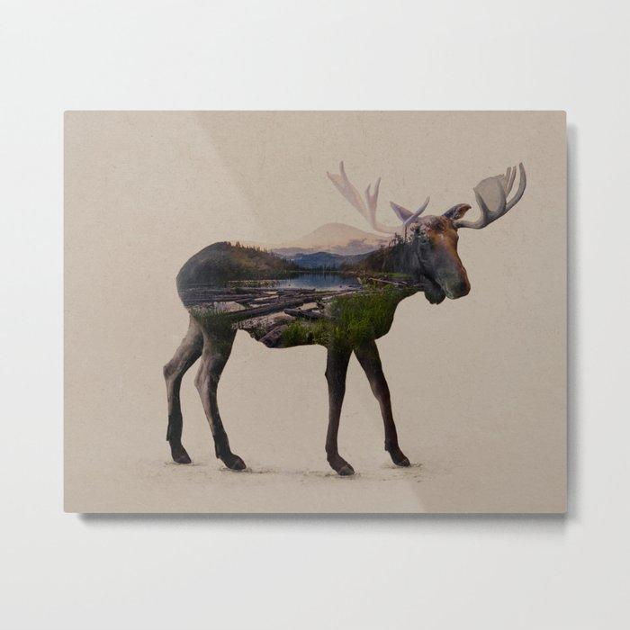 The Alaskan Bull Moose Metal Print