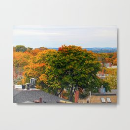Halloween Foliage in Portland (2) Metal Print