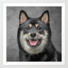 Drawing Japanese Shiba Inu dog Art Print