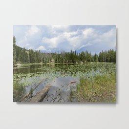 fairy lake Metal Print