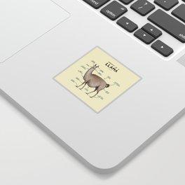 Anatomy of a Llama Sticker