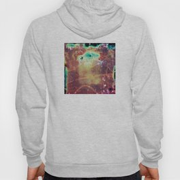 """It's a bug in my head."" Analog. Film photography Hoody"