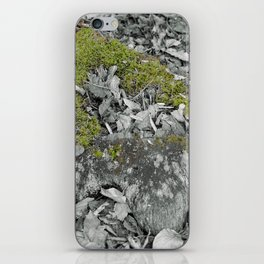 Mossy Stump iPhone Skin