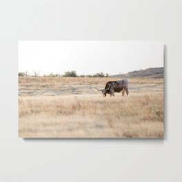 Longhorns 01  Metal Print