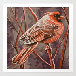 Northern Cardinal Male Art Print