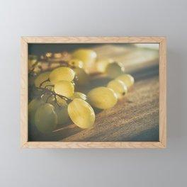 Food. Fruit. Summer grapes Framed Mini Art Print
