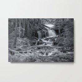 Big Springs (Black and White) Metal Print