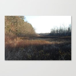 A meadow in winter in Massachusetts. Canvas Print