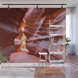 Exploring Nature's Grand Designs Wall Mural