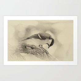 small bow Art Print