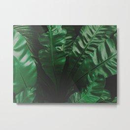 Dark green leaves Metal Print