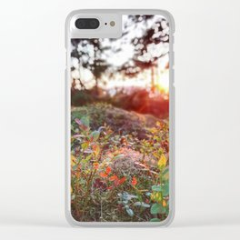 Evening glow in the forest Clear iPhone Case