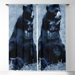 Black bear contemplating life Blackout Curtain