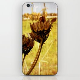 End of summer is near iPhone Skin