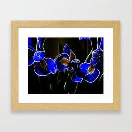 Iris Lights Framed Art Print