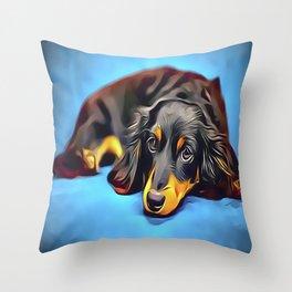 Sleepy Long Haired Brown Dachshund Throw Pillow
