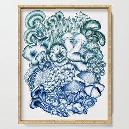 A Medley of Mushrooms in Blue Serving Tray