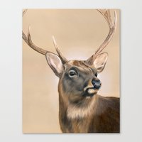 elk Canvas Prints featuring Elk by HeatherAckley