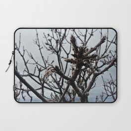 Frost Grows Cold on a Tree No. 1 Laptop Sleeve