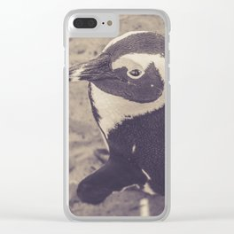 Adorable African Penguin Series 2 of 4 Clear iPhone Case