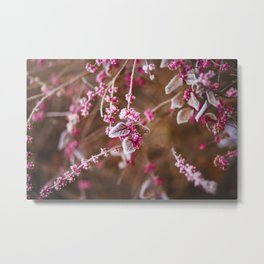 Frosted and Delicate Metal Print
