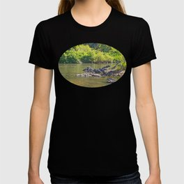 Beautiful rocks in the tranquil river T-shirt