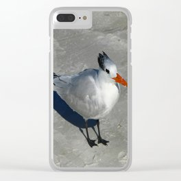Siesta Key Tern Clear iPhone Case