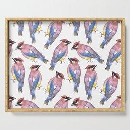 Cedar waxwing or Bombycilla cedrorum birds painting Serving Tray