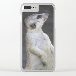 Sentry Meerkat Clear iPhone Case