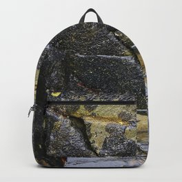 Reflective Rock Surface with Lichen Texture Backpack