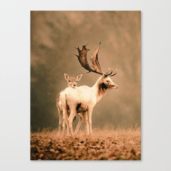 Deer 3 Canvas Print
