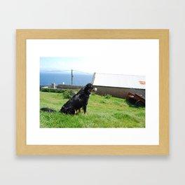 Watchdog Framed Art Print