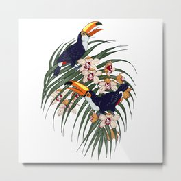Toucans in the tropics Metal Print
