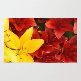"""""""A Gathering of Lilies"""" - 1 [D4465~12] Rug"""