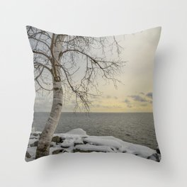 Curves of the Silver Birch by Teresa Thompson Throw Pillow