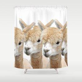 Alpaca Line Up Shower Curtain
