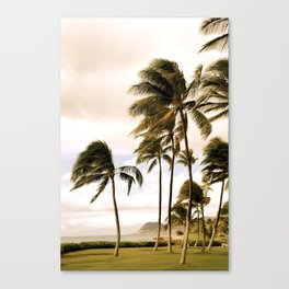 Vintage Hawaii Palm Trees Canvas Print