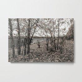 Untitled Landscape Metal Print