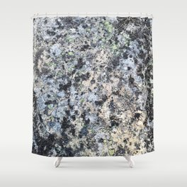 Nature lover's abstract art - Lichen on granite Shower Curtain