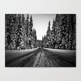 The Road Least Traveled Canvas Print