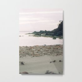 Coles Bay Sunset Seagull Metal Print