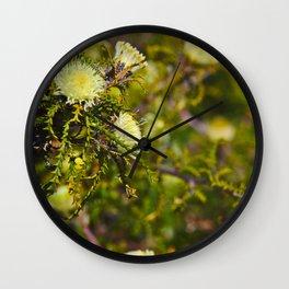 A Jewel Beetle On A Flower In Western Australia Wall Clock