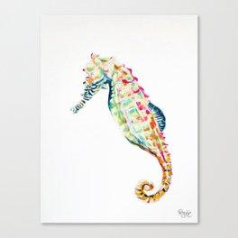 Seahorse / FLOAT Canvas Print
