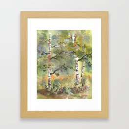 Spring Birch Forest, an original watercolor painting Framed Art Print