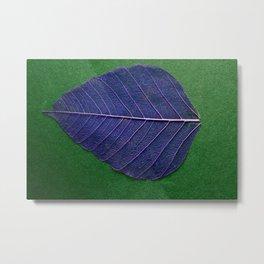 Life Lines * Blue Green * Thailand Bodhi Leaf Skeletons * Fine Art Print  Metal Print
