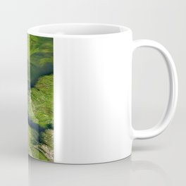 "Der fluss Limatt anschauend (Zurich) ""GEOROMANTIC"" series Coffee Mug"