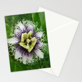 Entrancing Stationery Cards