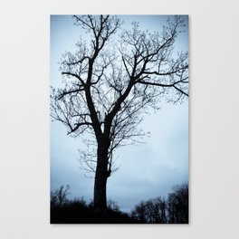 The Sentry Canvas Print