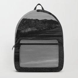 Monochrome Joshua Tree Road Backpack